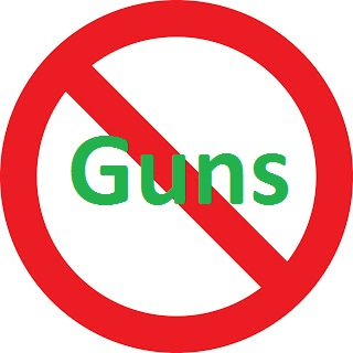 065 no guns
